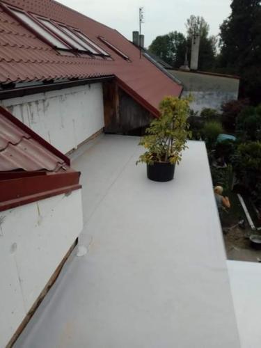 Zakázka č.4 - střecha